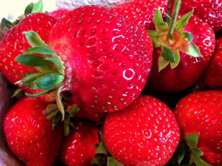 Erdbeeren aus regionalem Anbau